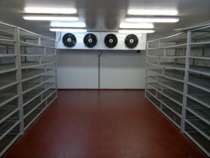 Наливные полы для холодильных комбинатов
